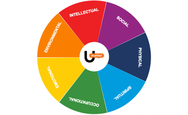 wellness wheel assessment umatter